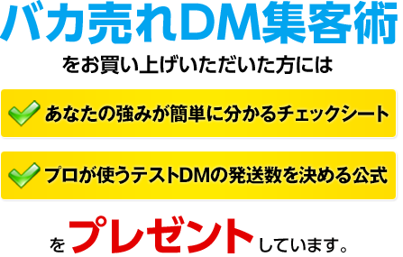 バカ売れDM集客術をお買い上げいただいた方には「あなたの強みが簡単にわかるチェックシート」「プロが使うテストDM発送数を決める公式」をプレゼントしています。